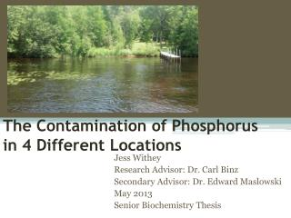 The Contamination of Phosphorus in 4 Different Locations