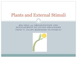 Plants and External Stimuli