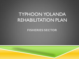 Typhoon yolanda rehabilitation plan