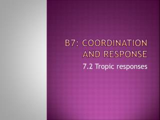 B7: Coordination and Response