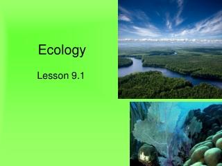 Biotic and Abiotic Factors