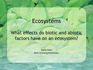 Ecosystems What effects do biotic and abiotic factors have on an ecosystem?