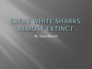 Great White Sharks: Almost Extinct