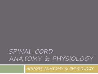 SPINAL CORD  ANATOMY & PHYSIOLOGY
