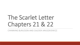 The Scarlet Letter  Chapters 21 & 22