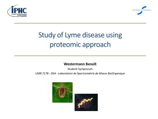 Study of Lyme disease using proteomic approach