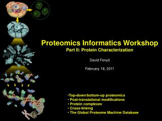 Proteomics Informatics Workshop Part II: Protein Characterization David  Fenyö February 18, 2011