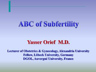 Yasser Orief  M.D. Lecturer of Obstetrics & Gynecology, Alexandria University