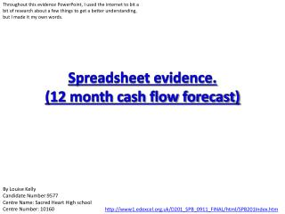 Spreadsheet evidence. (12 month cash flow forecast)