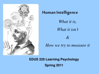 Measures of Intelligence  Adaptive Behavior
