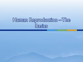 Human Reproduction – The Basics