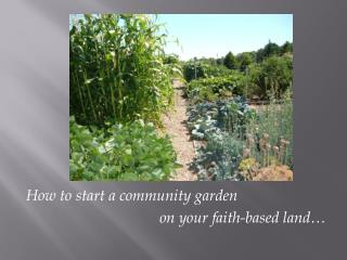 How to start a community garden  					on your faith-based land…