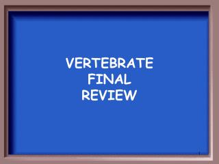 VERTEBRATE  FINAL  REVIEW
