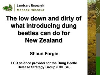 The low down and dirty of what introducing dung beetles can do for  New Zealand