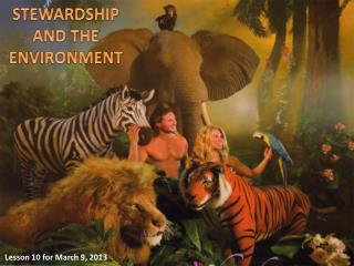 STEWARDSHIP AND THE ENVIRONMENT