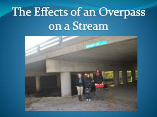 The Effects of an Overpass o n a Stream