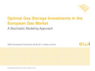 Optimal Gas Storage Investments in the European Gas Market