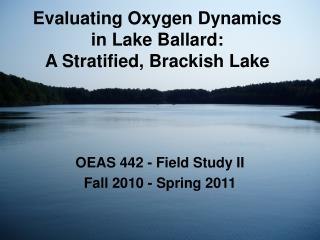 Evaluating Oxygen Dynamics in Lake Ballard:   A Stratified, Brackish Lake