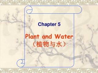Chapter 5 Plant and Water ( 植物与水 )