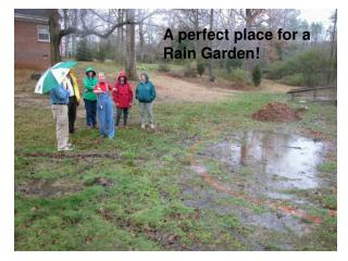 A perfect place for a Rain Garden!