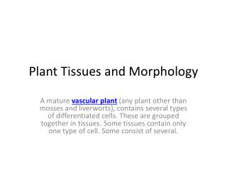 Plant Tissues and Morphology