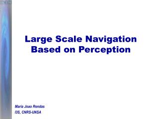 Large Scale Navigation Based on Perception