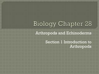 Biology Chapter 28