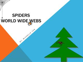 Spiders World wide webs