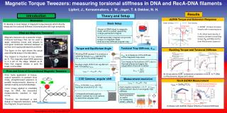 Magnetic Torque Tweezers: measuring  torsional  stiffness in DNA and  RecA -DNA filaments