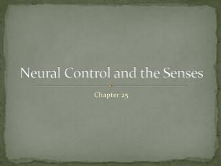 Neural Control and the Senses