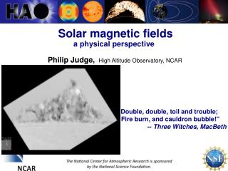 Solar magnetic fields  a physical perspective