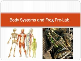 Body Systems and Frog Pre-Lab