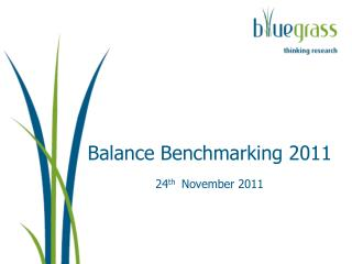 Balance Benchmarking  2011 24 th November 2011