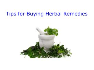 Tips For Buying Herbal Remedies