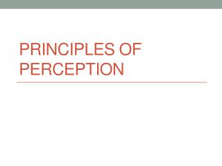 Principles of Perception