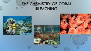 The Chemistry OF Coral Bleaching