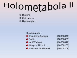Holometabola ll