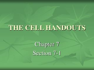 THE CELL HANDOUTS