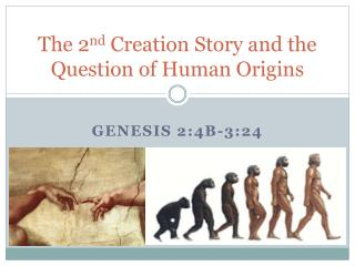 The 2 nd  Creation Story and the Question of Human Origins