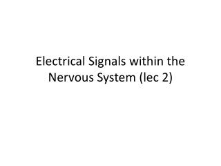 Electrical Signals within the Nervous  System ( lec  2)