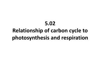 5.02 Relationship of carbon cycle to photosynthesis and respiration