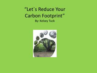 """Let`s Reduce Your  Carbon Footprint"" By: Kelsey Tuck"