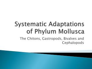 Systematic Adaptations of Phylum  Mollusca