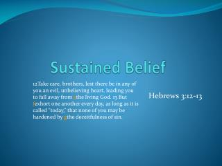 Sustained Belief