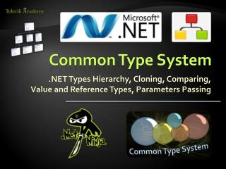 Common Type System