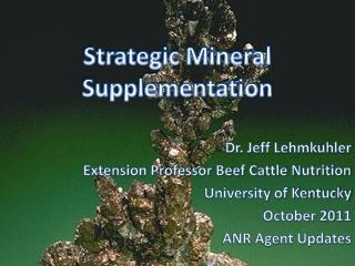 Strategic Mineral Supplementation