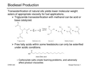 Biodiesel Production