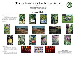 The Solanaceous Evolution Garden