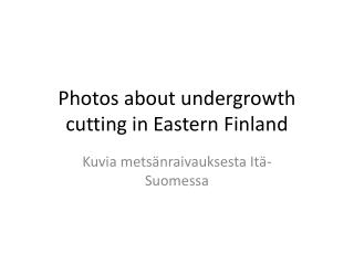 Photos about undergrowth cutting  in Eastern Finland