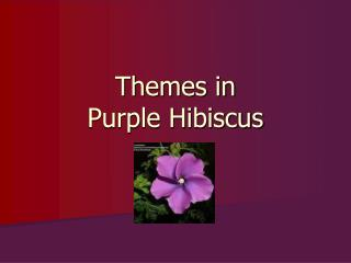 Themes in  Purple Hibiscus
